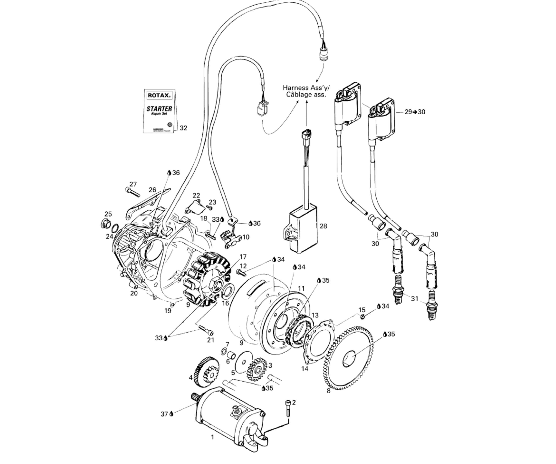 Lichtmaschine & Anlasser | Motor & Anbauteile | DS 650/DS 650 X ...